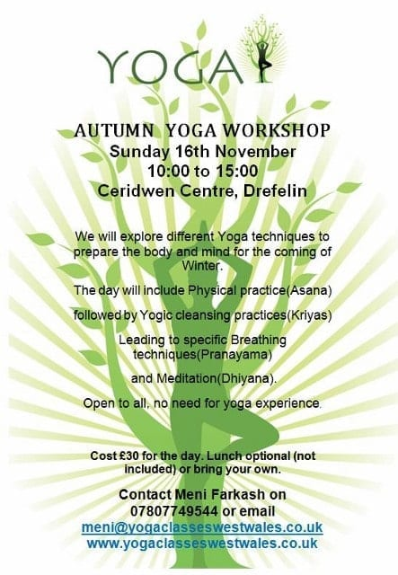 Yoga Workshop with Meni