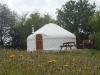 Bryn Helyg yurt from wildflower meadow