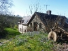 Ceridwen in spring