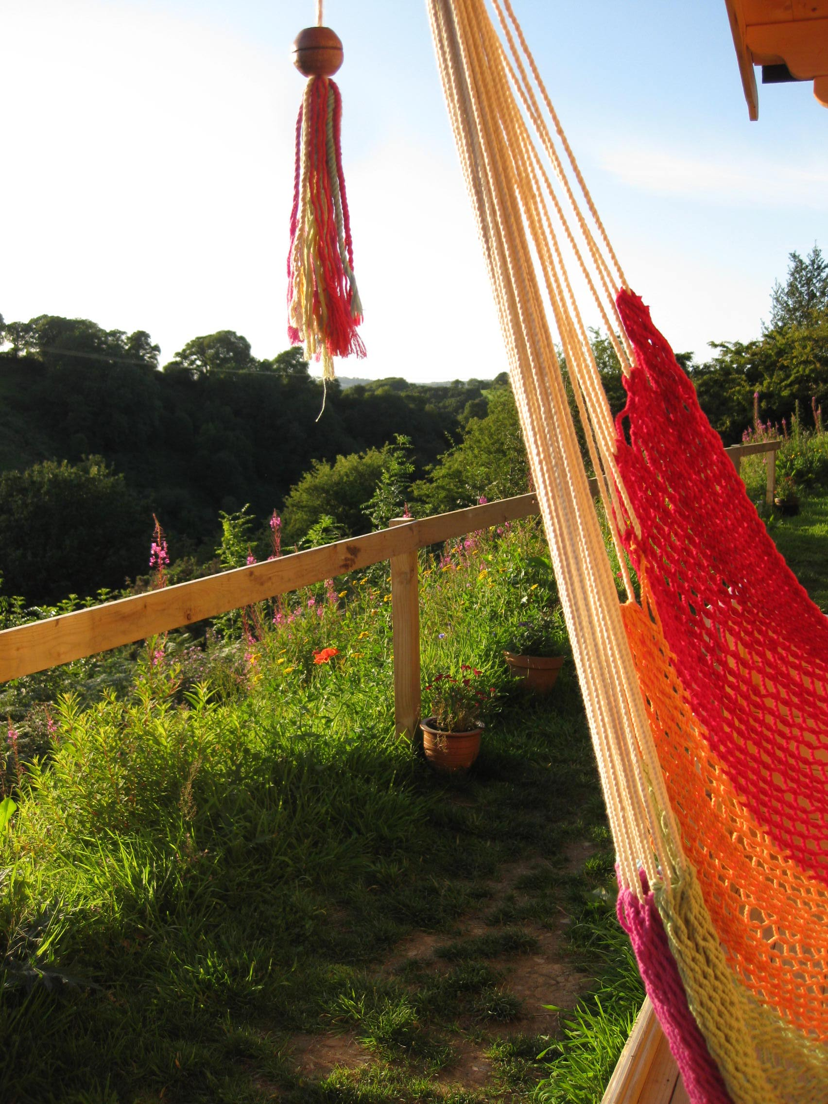 view-from-the-hammock