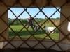 view-thru-yurt-window