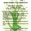 Prana Mudra Yoga Workshop on Saturday 22nd June