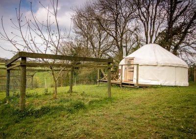 Afallon Yurt in spring