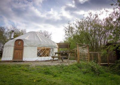 Bryn Helyg Yurt in Spring