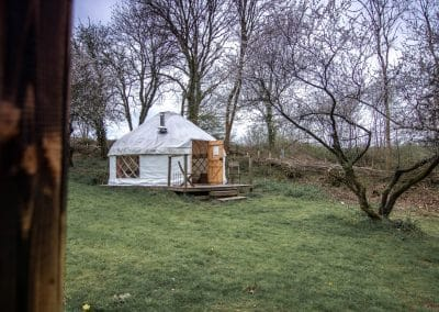 Damson yurt in early spring