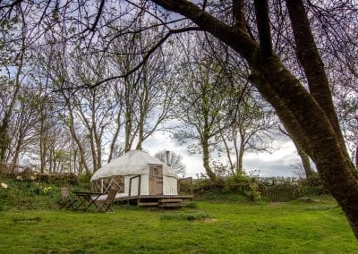 Wild Garlic Yurt in spring